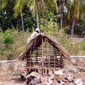 building_chicken_coop015
