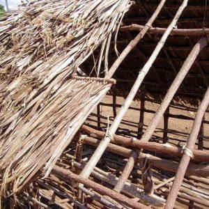 building_chicken_coop014